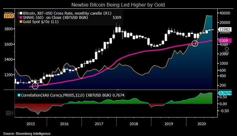 Newbie Bitcoin